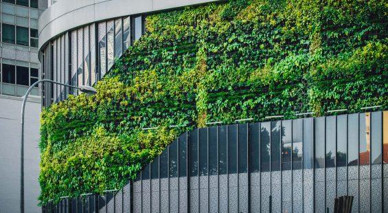 Green energy at the edge computing